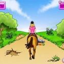 50 Pferdespiele