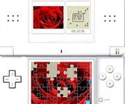Puzzle Blumen2