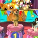 Hunde & Katzen 3D – Tierisch verspielt