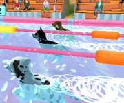 Hunde-&-Katzen-3D2