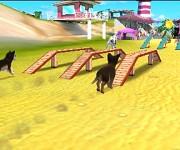 Hunde-&-Katzen-3D6
