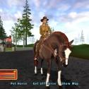 Pferd & Pony: Western Star