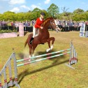 Pferd & Pony: Best Friends – Mein Pferd
