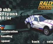 Rally-Cross5