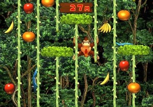 Donkey Kong Country1