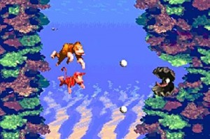 Donkey Kong Country4