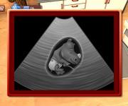 Tierklinik-3D-Afrika3