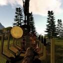 Forstwirtschaft 2017 – Die Simulation